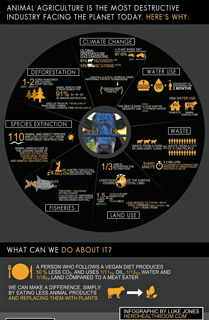 Photo: Cowspiracy inforgraphic. Source: Cowspiracy.com.